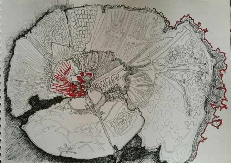 fleur-de-chine-encre-60x50